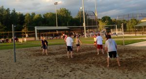 Adult Sand Volleyball League Action Picture